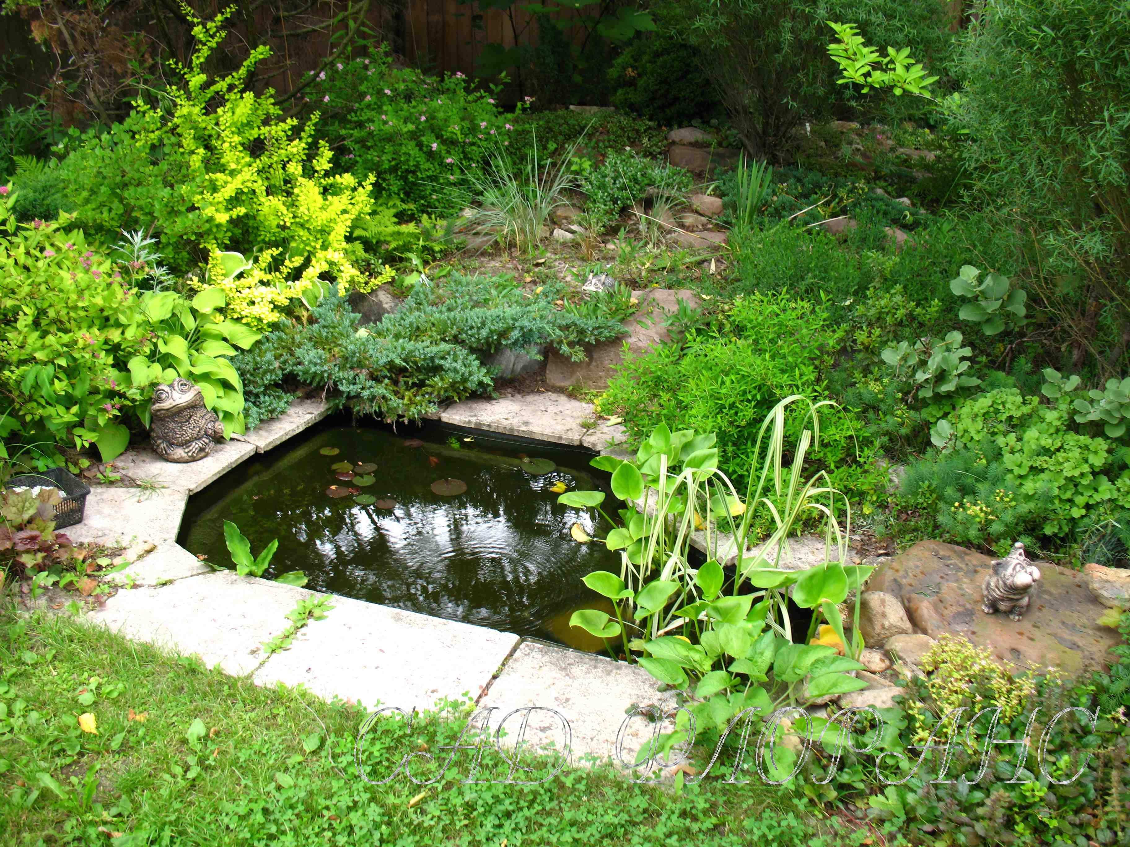 Сад называется сад флоранс и условно