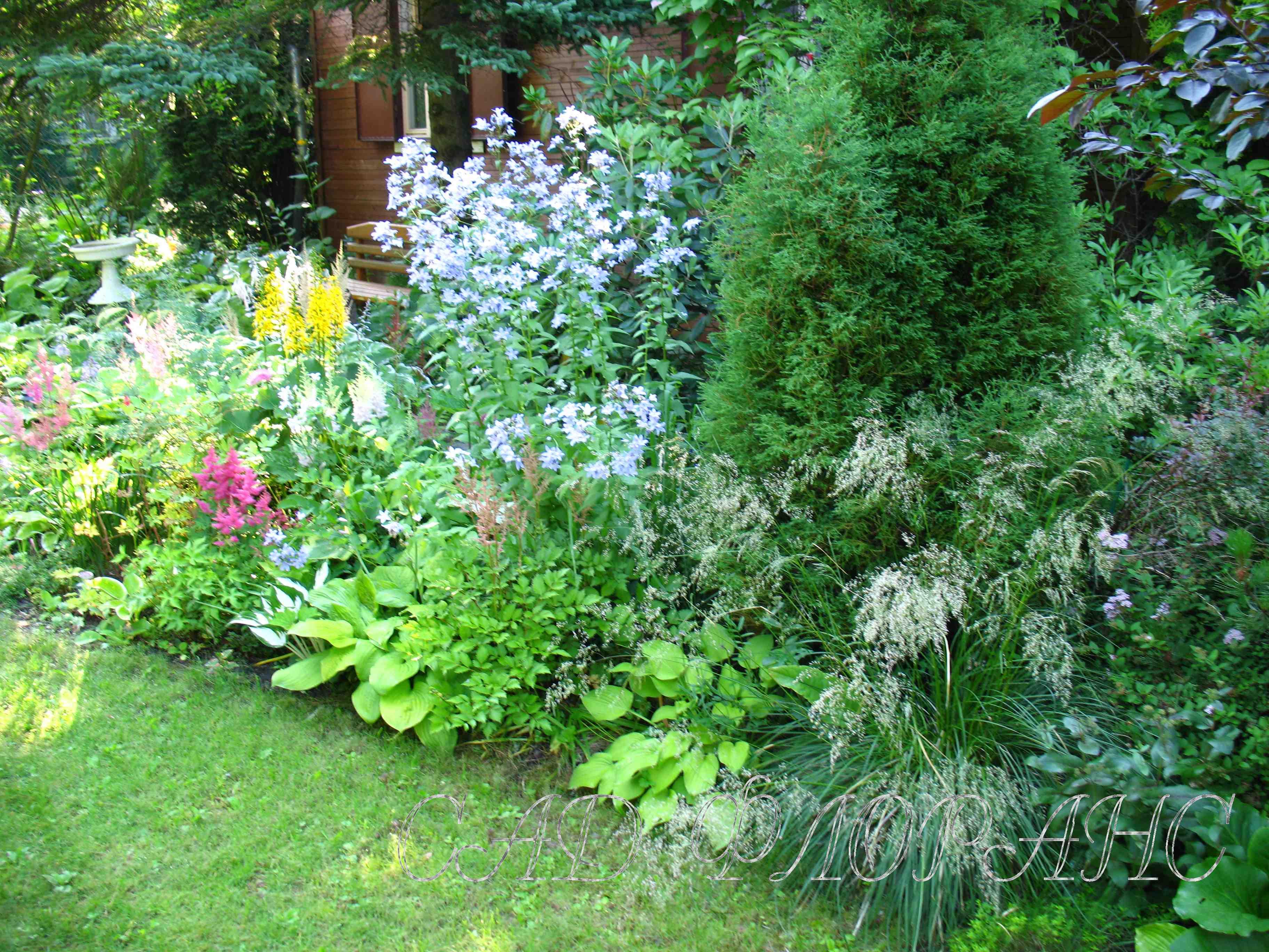 Сад флоранс